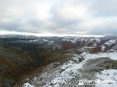 Hayedo de Pedrosa - Parque Natural Sierra Norte de Guadalajara - Hayedo de Tejera Negra